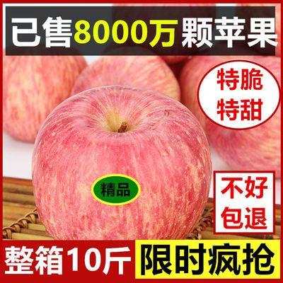 【冰糖心】10斤陕西苹果红富士新鲜水果类5斤果径75-95mm