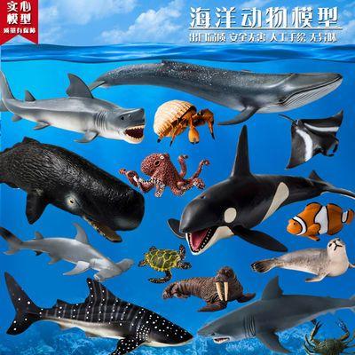 仿真动物模型套装玩具海洋生物大白鲨鱼虎鲸海豚企鹅海龟儿童礼物