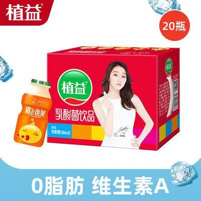 植益乳酸菌饮品酸奶牛奶儿童早餐奶饮料原味100ml*20瓶整箱批发