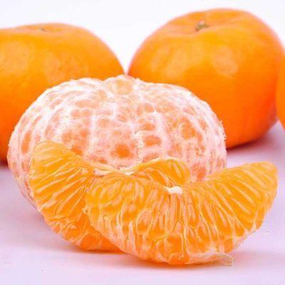 衢州椪柑新鲜红皮桔子柑桔丑橘子新鲜水果橘子非沃柑包邮芦柑蜜橘
