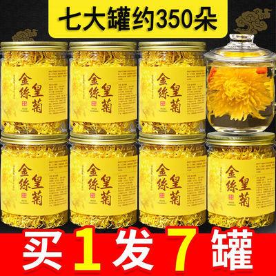 金丝皇菊一朵一杯大黄菊花茶特级散装可搭枸杞胎菊王贡菊玫瑰泡茶