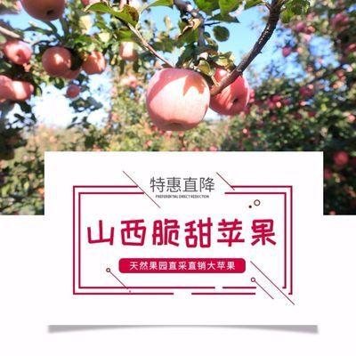 现货新鲜红富士苹果脆甜冰糖心丑苹果水果5/10斤带箱现货批发包邮