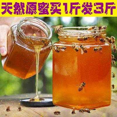 蜂蜜正品正宗野生深山土蜂蜜天然蜂农家自产百花蜜洋槐蜜500克/瓶
