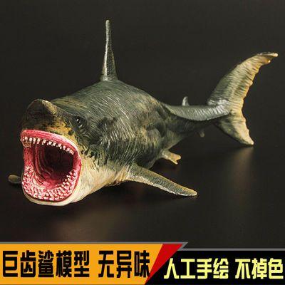 远古海洋生物动物模型大白鲨巨齿鲨大牙鲨仿真儿童玩具男女孩礼物