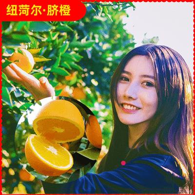 橙子宜昌纽荷尔脐橙现摘现发3/5/8.5斤 当季酸甜水果孕妇坏果包赔主图