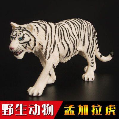 野生动物孟加拉虎东北虎白黄老虎仿真塑胶模型玩具男女孩礼物包邮