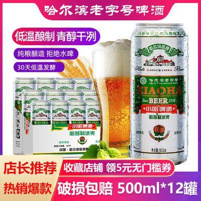 【官方正品】哈特哈尔滨冰爽老字号啤酒整箱批发500mlx12罐装啤酒