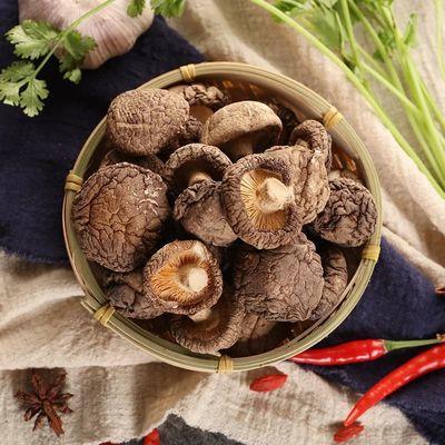 【特产香菇500g 】干香菇新货野生椴木厚肉香菇干货 香浓100g