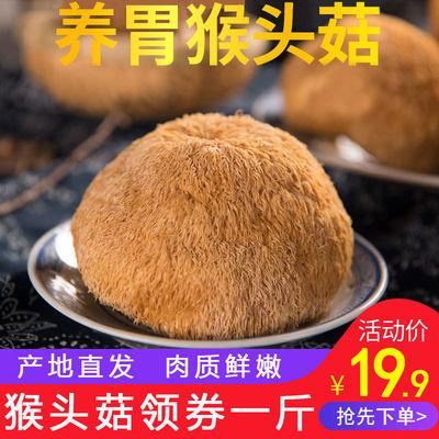 吉美味猴头菇新货干货无硫猴头菇古田食用菌干货250g/500g