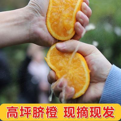四川脐橙水果新鲜10斤橙子非赣南橙子5斤3斤果园直发高坪甜橙柑子