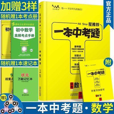 2020版一本中考题数学九年级数学总复习教辅辅导资料书专项训练