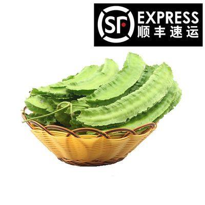 顺丰包邮海南三亚 新鲜蔬菜新鲜四角豆现摘四棱豆龙豆5/3/2/1斤装