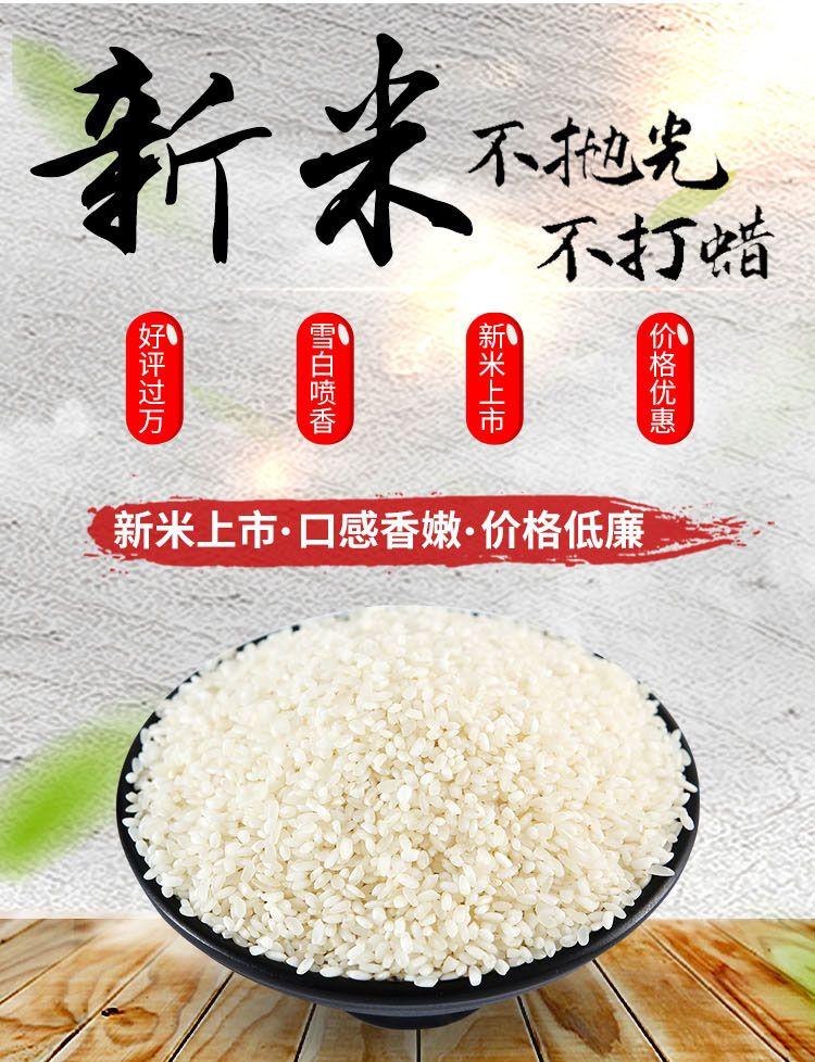 【10斤29.9】限时优惠东北大米批发2019年新米辽星白米生态白米圆粒米大米
