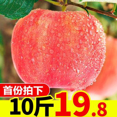 苹果水果新鲜当季10斤批一箱应季脆甜陕西红富士苹果整箱