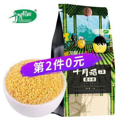 十月稻田 黄小米1kg小米月子米煮粥 农家自产杂粮粗粮
