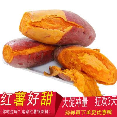 【产地热销】福建六鳌沙地红蜜薯 软香绵甜红薯 新鲜地瓜番薯包邮