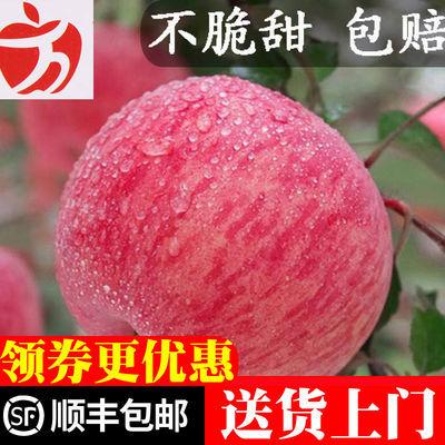 (不脆甜包赔)苹果水果红富士水果现摘现发应季水果苹果当季水果