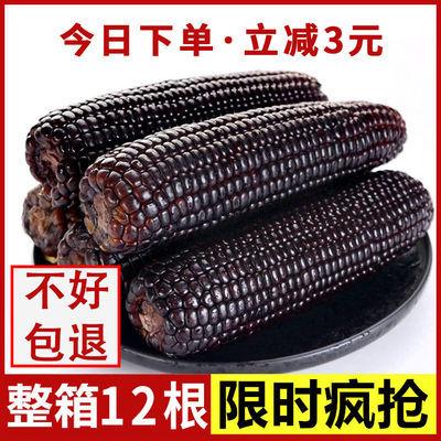 【老顾客优惠专用】山西玉米棒糯玉米新鲜玉米甜糯米真空包装粗粮