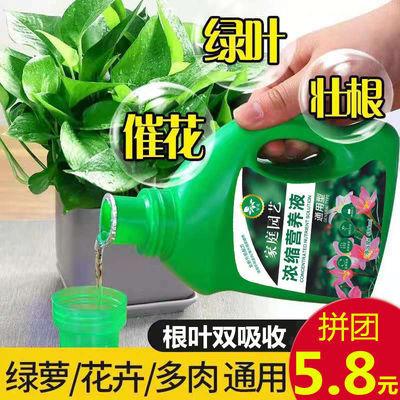 花卉通用营养液种花肥料绿植物通用液体有机肥水培土培叶面肥盆栽