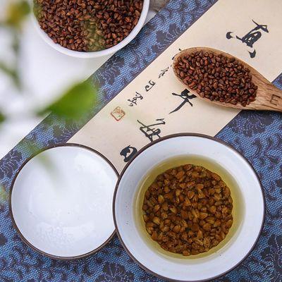 苦荞茶正品黑苦荞茶四川大凉山黄苦荞麦茶全胚芽花茶叶大麦500g罐