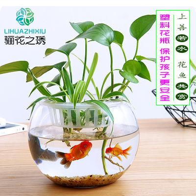 塑料高透明水培花瓶摔不破金钱草绿萝白掌水生植物容器