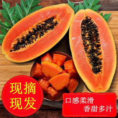 特价云南特产新鲜红心木瓜丰胸水果整箱3/5/9斤产地直发香甜可口