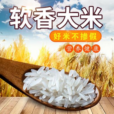 2019新大米10斤纯天然生态米 晚稻米籼米无抛光农家5kg长粒香米