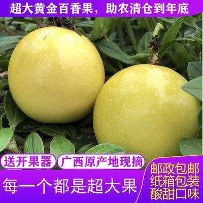【送开果器】黄金百香果现摘广西特级一级大果新鲜当季水果批发