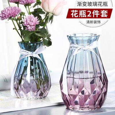 欧式水培玻璃花瓶简约透明水培鲜花绿萝干花花瓶植物花瓶客厅摆件