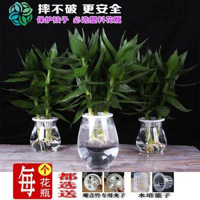 塑料透明水培富贵竹植物绿萝花瓶鱼缸花盆装饰品摆件插花特价清仓