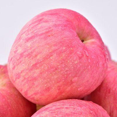 【脆甜多汁】山西运城红富士苹果新鲜水果3/5/10斤非糖心丑苹果