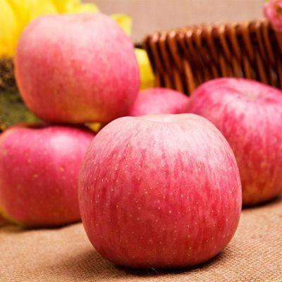 柠云阁山西红富士苹果5斤/10斤装 红苹果香甜健康水果