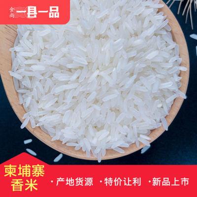 柬埔寨香米5kg-10Kg厂家直批大米 长粒香米农家新米可定制