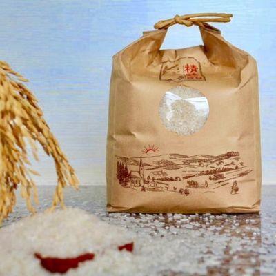 东北盘锦金大地文士绿色农业蟹田大米稻花香米一件2.5kg