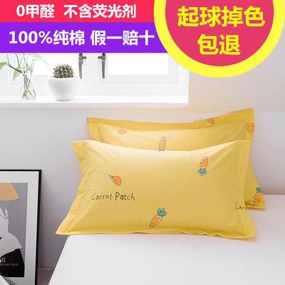 纯棉枕套100%一对装枕套皮单人成人双人全棉枕套大号枕头套枕芯套