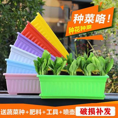 种菜盆阳台室内蔬菜种子种植塑料花盆加厚特大长方形养花种菜花盆