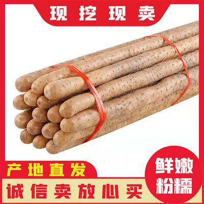 正宗小白嘴山药淮山药软糯3/5斤多规格可选农家蔬菜铁棍山药