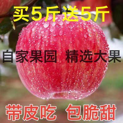 精品大果10斤陕西冰糖心红富士丑苹果甜心红苹果脆甜多汁不打蜡