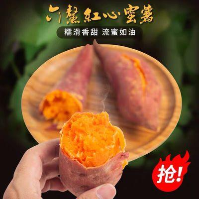 【正宗六鳌地瓜】红蜜薯沙地红薯新鲜现挖红心地瓜蜜薯5/9斤