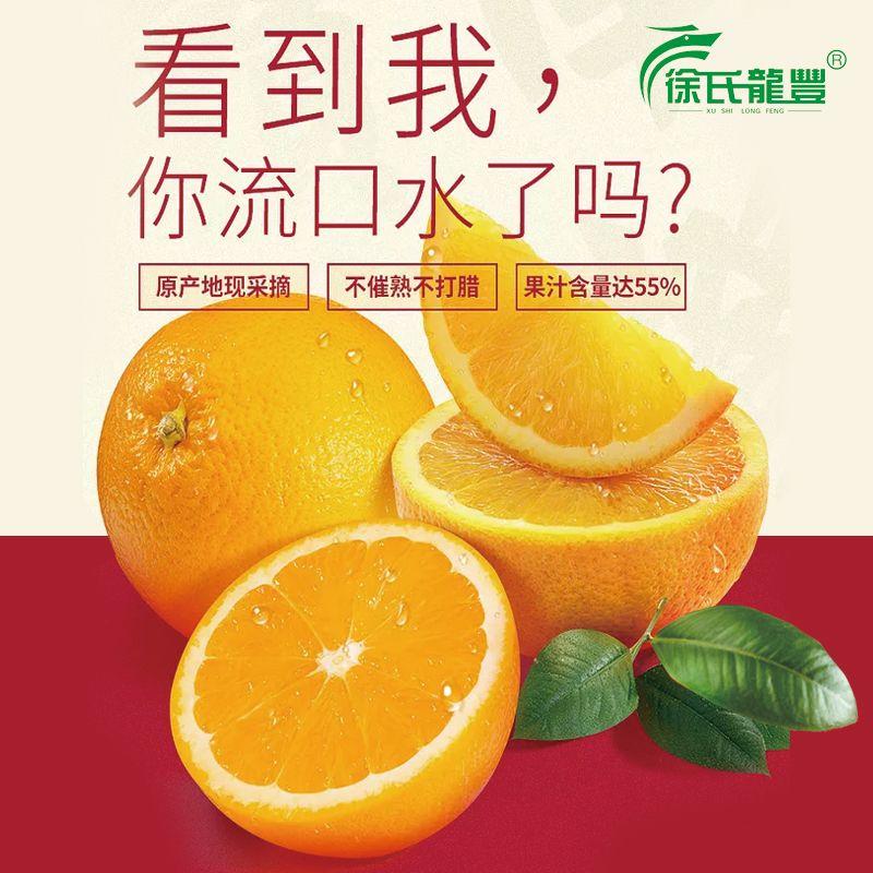 脐橙现摘现发新鲜水果应季新宁纽荷尔橙子手剥甜橙非果冻橙冰糖橙