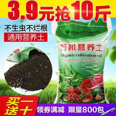 花土营养土大包养花土多肉土花卉肥料泥炭土种植土花泥绿萝多规格