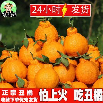 四川丑橘不知火丑八怪丑柑新鲜桔子橘子当季孕妇水果3/5/10斤