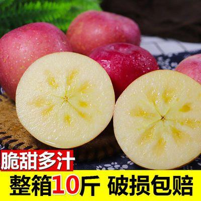 苹果10斤5斤装当季新鲜水果富士苹果年货孕妇水果新疆水果包邮