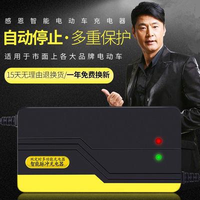 【限时抢购】高性能电动车充电器电瓶车充电器48V/60V/64V/72V/20