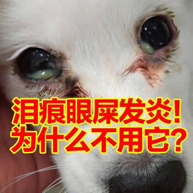猫咪狗狗去泪痕神器眼睛发炎流泪眼屎清洁专用药滴眼液消炎眼药水