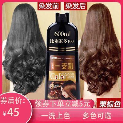 一支彩染发剂植物纯天然永久多色可选遮盖白发一次性泡沫染发洗发【3月10日发完】