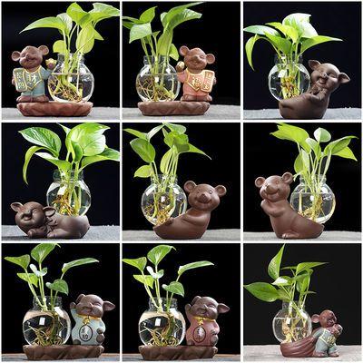 2020鼠年摆件迷你小花瓶玻璃透明水培养绿萝创意家居陶瓷装饰