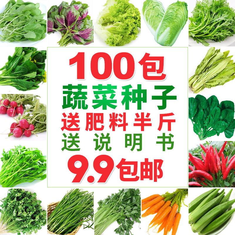 四季播种蔬菜种子阳台大棚菜籽黄瓜生菜西红柿草莓韭菜盆栽菜种子