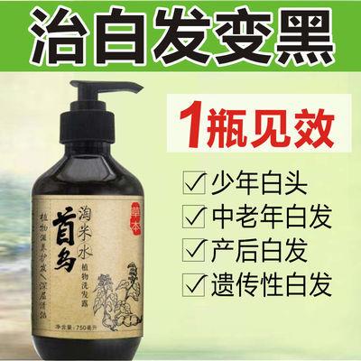 治白发变黑发中草药何首乌洗发水治疗纯植物白发转黑乌发液少白头