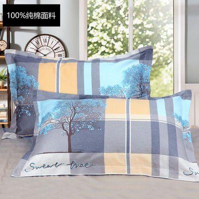 纯棉枕套一对成人加厚全棉枕头套大号拉链枕芯套单人枕头套一只装